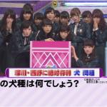 乃木坂って、どこ!クイズ対決 乃木坂46 vs クイズ王